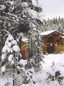 Cabin in the woods during winter