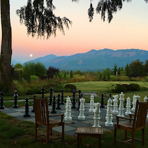 Giant chess set on a lawn