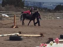 A teen on horseback