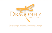Dragonfly transitions logo