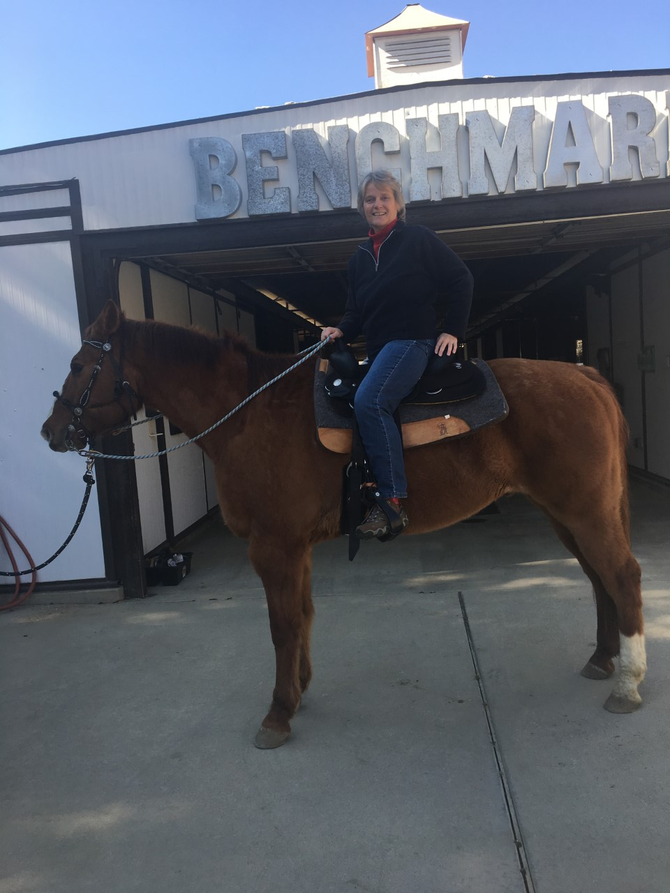 Colleen Callahan sitting on a brown horse.
