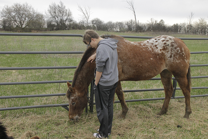 Young teen petting a horse in a field
