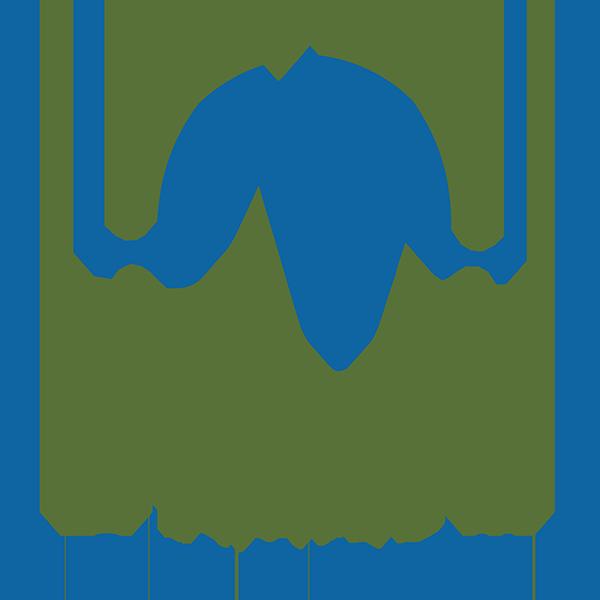 logo for Trails Momentum